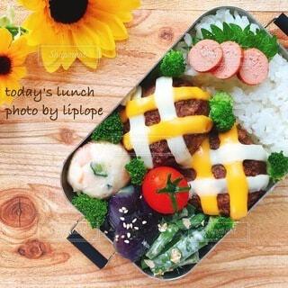チェック柄ハンバーグと自家製野菜たっぷりのお弁当の写真・画像素材[4739011]