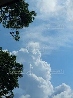 青空の雲の写真・画像素材[4768901]