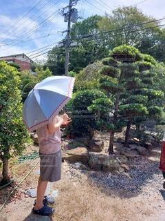 木の前に立っている男の写真・画像素材[4771655]
