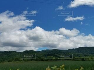 大きな緑の畑と青空の写真・画像素材[4754561]