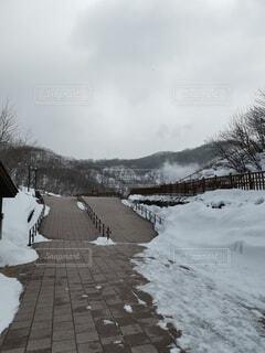 雪の中を歩いている人々のグループの写真・画像素材[4764379]