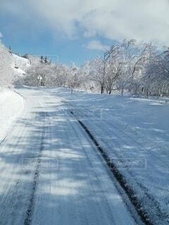 雪に覆われた道路の写真・画像素材[4764393]