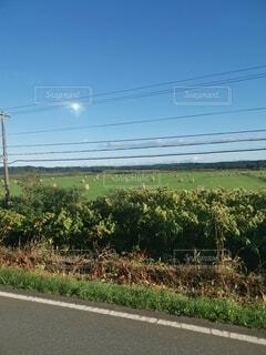 道路の側の標識の写真・画像素材[4771136]