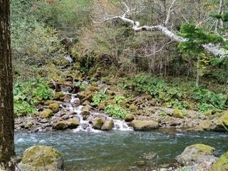 水の体の上に大きな滝の写真・画像素材[4922779]