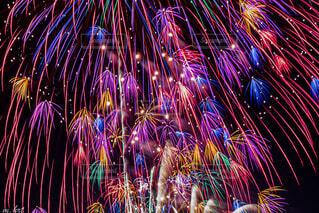 夜空に浮かぶ火花たちの写真・画像素材[4764149]