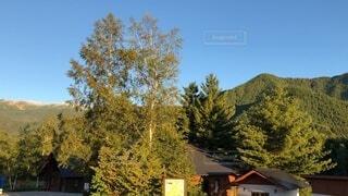 山のキャンプ場、早朝③の写真・画像素材[4764892]