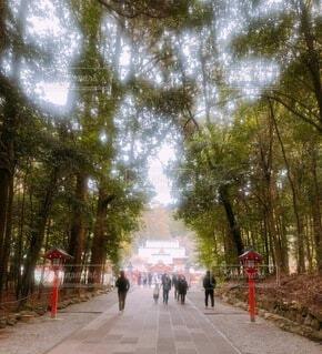 神社の参道を歩く3人のサラリーマンの写真・画像素材[4754020]