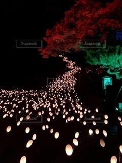 冬の竹のお祭りの背景パターンの写真・画像素材[4770569]