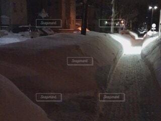 雪景色の夜公園の写真・画像素材[4768955]