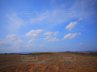 青空と大地の写真・画像素材[4811349]
