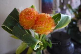 花束の写真・画像素材[4837209]