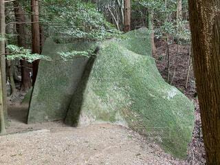 岩の写真・画像素材[4758439]