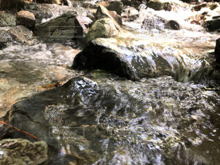 水面 川の写真・画像素材[4761464]