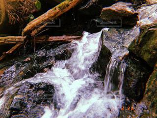 川の写真・画像素材[4761468]