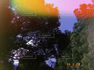 夏の写真・画像素材[4761472]