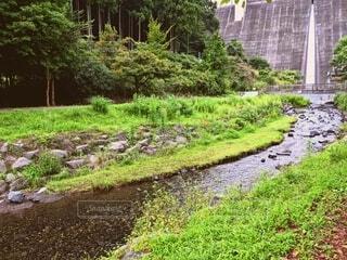 夏休みの最後の川遊びの写真・画像素材[4769792]