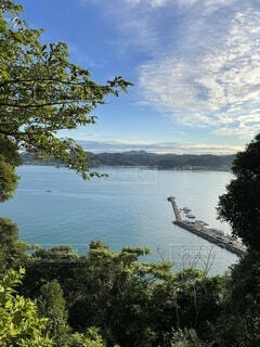 高台から望む小さな漁港の写真・画像素材[4760925]