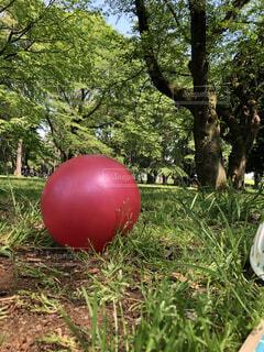 赤いボールの写真・画像素材[4772538]