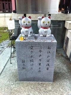 今戸神社の招き猫の写真・画像素材[4767509]