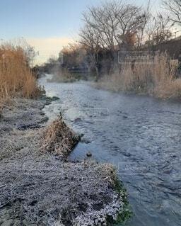 湯気立ち上る朝 冬の川の写真・画像素材[4762453]
