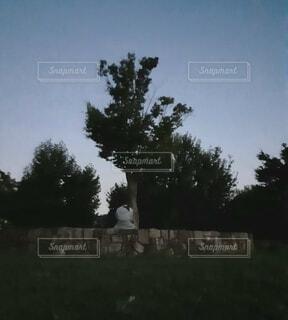 公園の木と座る人の写真・画像素材[4763359]