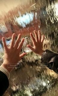水に触れる手のひらの写真・画像素材[4772090]