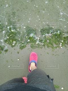 夏の砂浜の写真・画像素材[4796396]