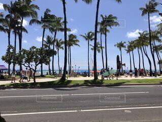 よくあるハワイの風景の写真・画像素材[4763509]