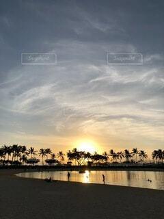 幻想的な夕暮れにヤシの木が映えるビーチの写真・画像素材[4763514]