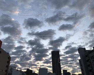 ビル上に広がるウロコ雲 朝焼けの写真・画像素材[4817611]