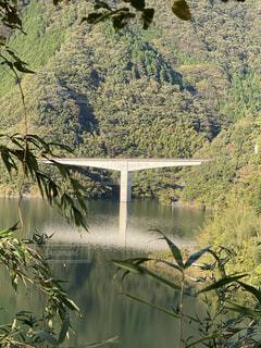 ダム湖に架かる橋の写真・画像素材[4766995]