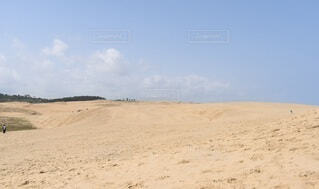 砂丘の写真・画像素材[4770062]