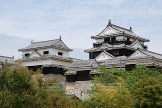 松山城の写真・画像素材[4774471]