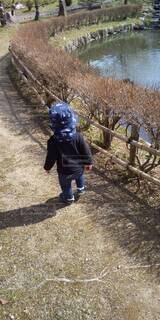 よちよち散歩の写真・画像素材[4782906]