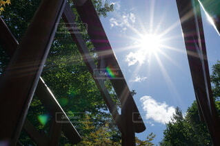 鳥居の間の太陽の写真・画像素材[4769645]