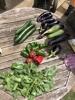 グランピング とれたて野菜の写真・画像素材[4770895]