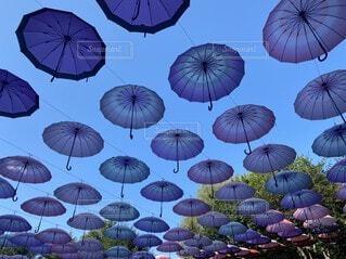 空に浮かぶパラソルたちの写真・画像素材[4768120]