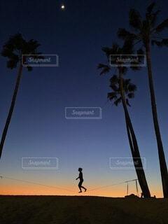 空中散歩の写真・画像素材[4771192]