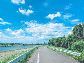 道路の脇に木がある道の写真・画像素材[4797207]