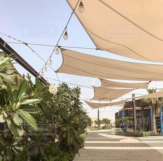 アブダビにあるカフェと公園の写真・画像素材[4768574]