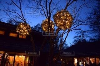 イルミネーションで飾られた軽井沢の写真・画像素材[4768672]