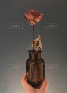 瓶とドライフラワーの写真・画像素材[4770978]