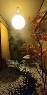 屋内モデルの写真・画像素材[4768525]