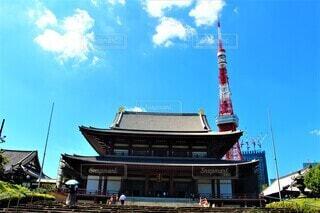 東京タワーとお寺の写真・画像素材[4833274]