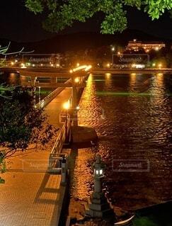 夜の散歩の写真・画像素材[4770185]
