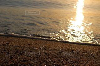 砂浜での優しい時間の写真・画像素材[4769832]