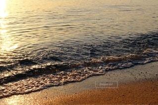 優しい波と砂浜1の写真・画像素材[4771405]