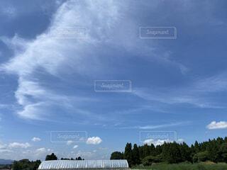 青い空の写真・画像素材[4769575]