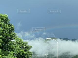 空の雲の群の写真・画像素材[4769585]