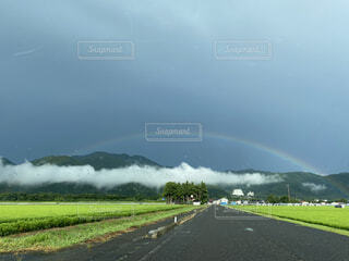 野原の上に虹をの写真・画像素材[4769587]